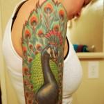 tatuagem de pavão