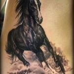 tatuagem de cavalo